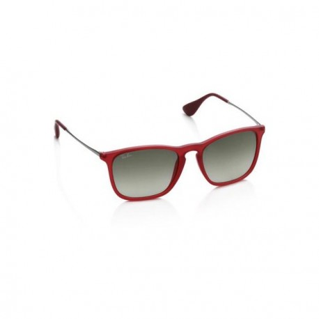"""Ray Ban Wayfarer Sunglasses"